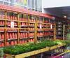Holzregal im Gartenmarkt für Terrakotta